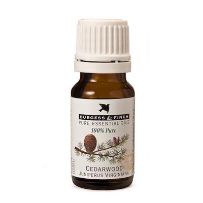 Burgess & Finch Cedarwood Oil 10ml