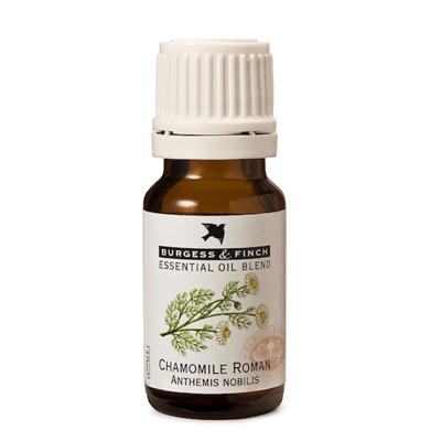 Burgess & Finch Chamomile Roman Oil 10ml (Blend)