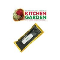Kitchen Garden – Leek Seeds for Sprouting