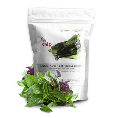 The Herbal Pet – Dried Kelp Powder – Nutritional Supplement for Pets