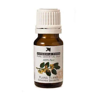Burgess & Finch Ylang Ylang Essential Oil 10ml