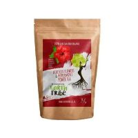 Earth Tribe Hibiscus Flowers & Peppermint Tea – Blood Health, Immune System & Digestion